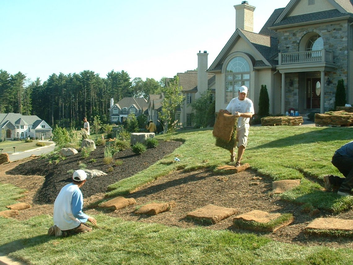 Large Sod And Garden Plantings